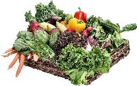 fiber in vegetables